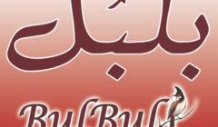 BulBul $50 Gift Certificate