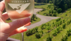 Experience America's First  Wine Trail